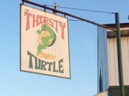Image for Thirsty Turtle